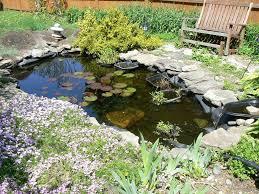 Small Picture DIY Water Gardens Designing A Backyard Water Garden
