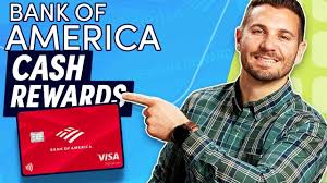 But if you're a big spender, the card's bonus rewards. Bank Of America Customized Cash Rewards Credit Card Review Creditcards Com