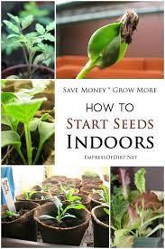 seeds indoors