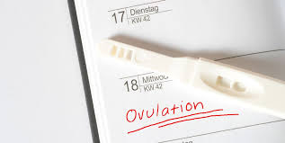 Ovulation Kit How To Choose How To Use And More
