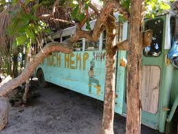 Exploring Hopkins Village - Filled With Funky and Fascinating Spots and  People - San Pedro Scoop | San pedro, Hopkins belize, Village