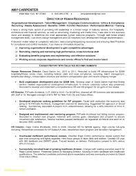 Free Blank Resume Templates Printable New 25 Resume Blank Templates