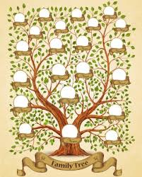 Drawing A Family Tree Template Drawing Family Tree Template Stock Illustrations Royalty