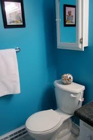 Paint Colours Bathroom Accent Wall Paint Ideas Bathroom