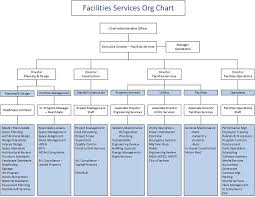 Organizational Chart University Of Mississippi Medical Center