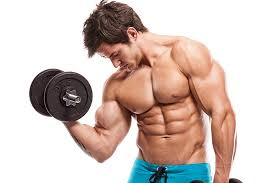 What Muscle Groups To Workout Together Yeg Fitness