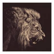 lion roaring black and white.  Roaring Intended Lion Roaring Black And White X