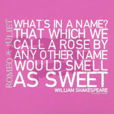 Quotes From Romeo And Juliet Awesome Romeo Juliet Rose Quote Women's Boy Brief Quotes Pinterest