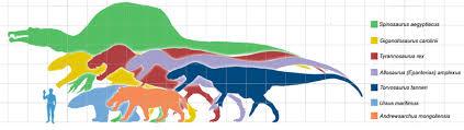carcharodontosaurus size torvosaurus gurneyi christophe hendrickx palaeontologist