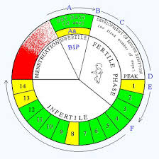 Natural Family Planning Mucus Chart Natural Family Planning Nfp Circle Chart Easy And No