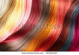 Hairstyle Color hair color stock images royaltyfree images & vectors shutterstock 2683 by stevesalt.us