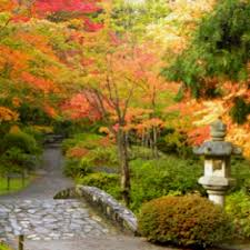 Small Picture 176 best Japanese Gardens images on Pinterest Japanese gardens