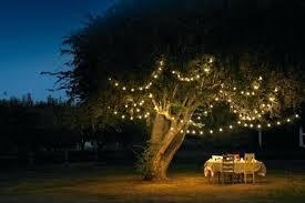 outdoor fairy lighting. Garden Fairy Lights Led Solar Deals Reviews Argos Outdoor Lighting S
