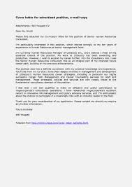 Sample Job Email Message Elioleracom Insurance Auditor Cover
