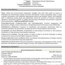 Professional Resume Writers Government Jobs Best Resume Examples