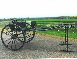 Image result for dennett gig carriage description