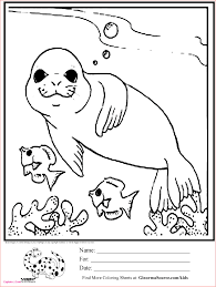 Free Dolphin Coloring Pages Lovely 20 Best Tree Coloring Pages Free
