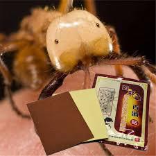 <b>Disaar</b> New 8pcs/bag <b>Chinese Medicine</b> Analgesic Patch Black Ant ...