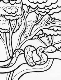 Small Picture Best Rainforest Coloring Pages Photos New Printable Coloring