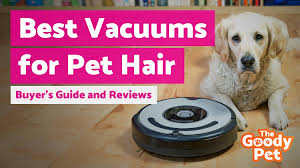 best pet hair vacuum cleaner october 2018 er s guide and reviews the goody pet