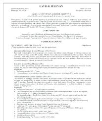 Account Manager Resume Objective Best of Advertising Account Manager Resume Account Manager Resume Objective