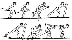 Виды ходов на лыжах для уроков по лыжной подготовке Скоростной вариант одновременного одношажного хода