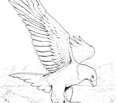 Eagle Coloring Pages Bald Eagle Coloring Pages Free Coloring Pages
