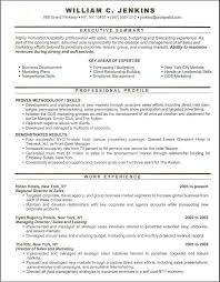 Executive Resume Professional Executive Resume Writers and Cover Letter at 70