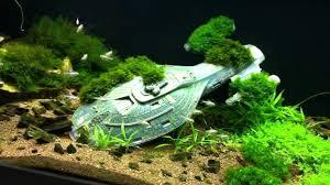 Funny Fish Tank Decorations Cool Fish Tanks Related Keywords Suggestions Cool Fish Tanks
