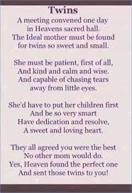 Loss Of A Brother Quotes Custom Losing A Twin Brother Quotes Best Quote Photos HaveimagesCo