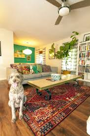 Inexpensive Rugs For Living Room Discount Area Rugs 8x10 All Old Homes Inexpensive For Living