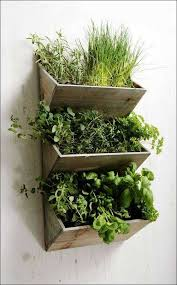 shabby chic wall hanging herbs planter kit wooden kitchen unique of indoor herb garden planters of
