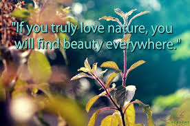 Beautiful Environment Quotes