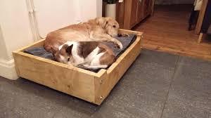full size of wood dog bed frame plans diy dog bed frame diy doggie bedperfect comfy