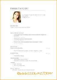 Curriculum Word Word Curriculum Vitae Barca Fontanacountryinn Com