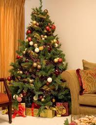 Christmas Tree At Home  Christmas Lights DecorationAt Home Christmas Tree