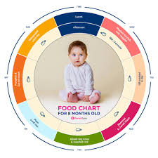 Indian Baby Food Chart By Age Baby Food Indian Food Chart For 8 Months Old Baby