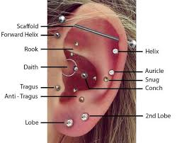 Piercing Placement Chart Top Ear Piercings Placements Diagram Bmg Body Jewellery