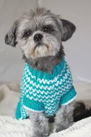 Dog Sweater Crochet Pattern Stunning Crochet Dog Sweater Patterns To Try Out Cottageartcreations