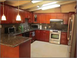 Kitchens Remodeling Design1000665 Remodeled Kitchen 2017 Kitchen Remodel Cost 94