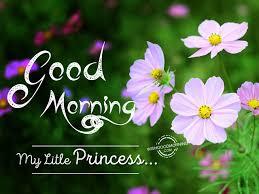 good morning my little princess