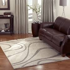 Add A Contemporary Look To Your Room With This Stylish Power Loomed Shag Rug  From
