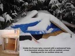outdoor cat shelter diy