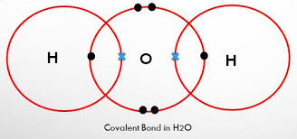 Metals Vs Nonmetals Venn Diagram Difference Between Covalent Metallic And Ionic Bonds With
