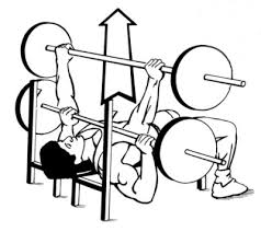 Decline Bench Barbell Press  Second Chance FitnessDecline Barbell Bench