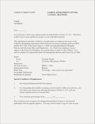 Successful Resume Templates Inspirational Most Effective Resume Templates Resume Ideas