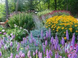 Small Picture Perennial Garden Ideas Zone 5 Maintenance Design For The Front