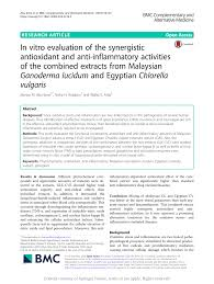 in vitro evaluation of the synergistic