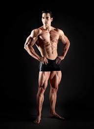 Anatomia corpului uman: Sistemul muscular