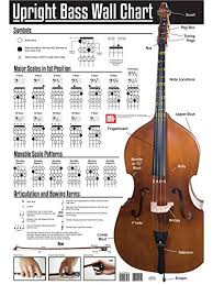 Double Bass Finger Chart Pdf Amazon Com Poster Upright Bass Wall Chart For Double Bass